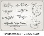 calligraphic design elements....   Shutterstock .eps vector #262224605