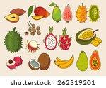 set of exotic fruit. vector... | Shutterstock .eps vector #262319201