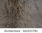Deer Fur Gray Background. Skin