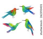 exotic birds. sketch of a... | Shutterstock .eps vector #262353431