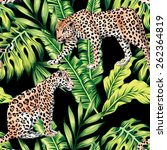 leopard and palm leaves... | Shutterstock .eps vector #262364819
