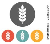 wheat icon | Shutterstock .eps vector #262518644