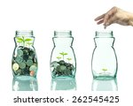 mix coins and seed in clear... | Shutterstock . vector #262545425