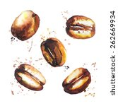coffee beans   Shutterstock .eps vector #262669934