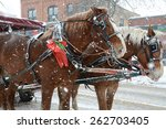 Horses Pulling A Tourist Cart...