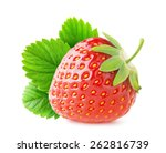 isolated strawberry. one... | Shutterstock . vector #262816739