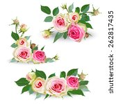set of yellow roses. garland of ... | Shutterstock .eps vector #262817435