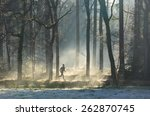 Man Running In The Forest On A...
