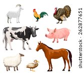 farm animals decorative icons... | Shutterstock .eps vector #262877651