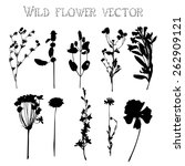 set of silhouettes of wild... | Shutterstock .eps vector #262909121
