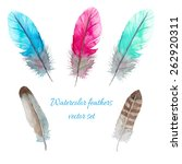 watercolor birds feathers set.... | Shutterstock .eps vector #262920311