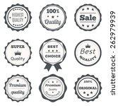 vector vintage badges. best... | Shutterstock .eps vector #262979939