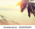 tropical beach sunset... | Shutterstock . vector #263054654