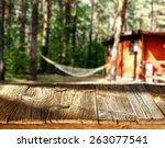 sunny day and camping  | Shutterstock . vector #263077541