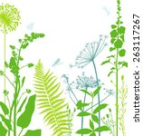 flower bed | Shutterstock .eps vector #263117267