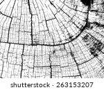 crack vector texture   Shutterstock .eps vector #263153207