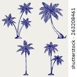 Silhouette Of Palm Trees....