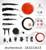 set of brushes and other design ... | Shutterstock .eps vector #263213615