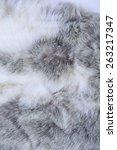 Macro Texture Gray Rabbit Fur...