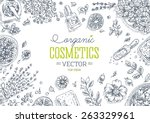 organic cosmetics top view... | Shutterstock .eps vector #263329961
