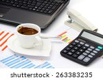 analyzing business investment... | Shutterstock . vector #263383235
