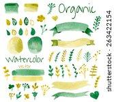 organic  bio  natural design... | Shutterstock .eps vector #263422154