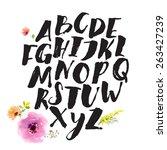 hand drawn alphabet written... | Shutterstock .eps vector #263427239