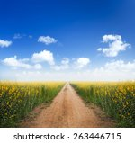 Dirt Road Into Yellow Flower...