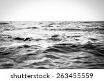 Black And White Seascape Of Th...
