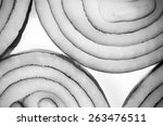 red onion | Shutterstock . vector #263476511