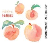 Vector Watercolor Peaches Frui...