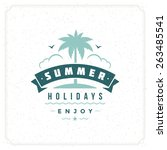 summer holidays typography for... | Shutterstock .eps vector #263485541