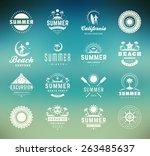 summer holidays design elements ... | Shutterstock .eps vector #263485637