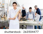 portrait of young female chef... | Shutterstock . vector #263504477