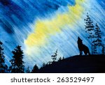 Beautiful Northern Lights And...