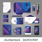 vector graphic professional... | Shutterstock .eps vector #263531969