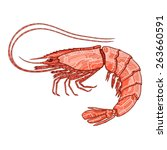 shrimp vector ornate... | Shutterstock .eps vector #263660591
