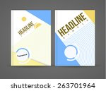 vector illustration with... | Shutterstock .eps vector #263701964