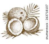 vector engraving  illustration... | Shutterstock .eps vector #263718107