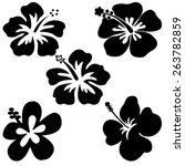 Five Hibiscus Vector On White...