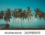 retro stylized palm trees on... | Shutterstock . vector #263980055