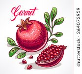 delicious ripe pomegranate with ... | Shutterstock .eps vector #264072959