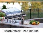 preparing a healthy summer meal ... | Shutterstock . vector #264184685