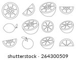collection of citrus slices  ... | Shutterstock .eps vector #264300509