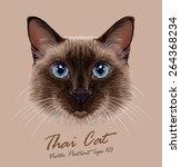 Siamese Cat Animal Cute Face....