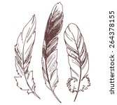 feathers  sketch illustration ... | Shutterstock .eps vector #264378155
