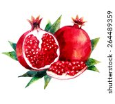 watercolor hand drawn garnet.... | Shutterstock .eps vector #264489359