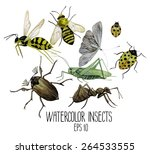 Watercolor Set Of Insects. Was...