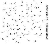 birds  gulls  black silhouette... | Shutterstock .eps vector #264558029