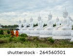 group of white buddha image... | Shutterstock . vector #264560501
